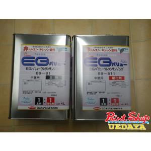 【送料無料】 ユニオン EG バリューウレタンサンジング セット 8L 89-811 89-81|paintshop-uedaya
