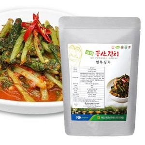 『韓国農協』ヨルムキムチ|なかぬきキムチ・大根葉 (500g)■韓国産100%  大根の若菜キムチ 韓国キムチ 韓国食材 韓国食品|paldo