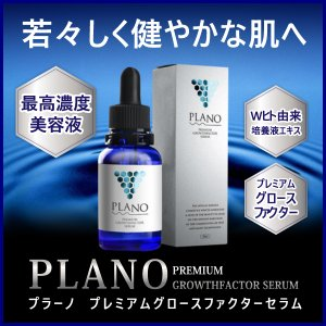プラーノ プレミアムグロースファクターセラム 美容液 美容成分 EGF FGF プロテオグリカン 高濃度 肌ケア palette-for-men