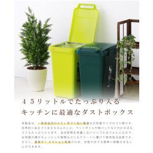 ゴミ箱 45リットル 分別 ダストボックス お...の詳細画像4