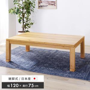 こたつ こたつテーブル 長方形 国産 日本製 木製 幅120 継脚式 冷暖房器具 palette-life