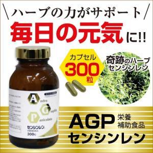 AGPセンシンレン(300粒) サプリメント 健康 アンドログラフォリド ハーブ 送料無料|palette-store01