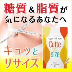 キュッとリサイズ 新商品 ダイエット 糖質制限 脂質制限 サプリメント 油分吸着型キトサン palette-store01