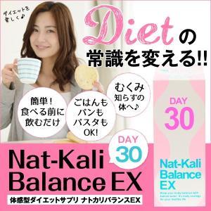 ダイエット、むくみ、難消化性デキストリン、カリウム、ピーチ味 ナトカリバランスEX(30包)|palette-store01