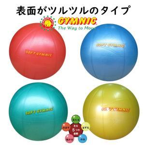 ニュータイプ バランスボール ギムニク ニュー ソフトジム 日本Gボール協会認定ボール NEWSOFT GYMNIC OVER LP9509N