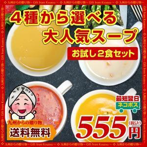 送料無料 さらに美味しくなった 新4種から選べる大人気 お試し スープ 2食セット グルメ お取り寄せ 食品 訳あり わけあり ポイント消化 得トクセール palm-gift