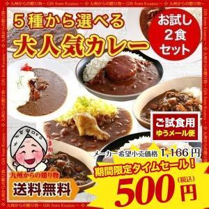 [訳あり:箱なし] 5種から選ぶ大人気 レトルト カレー 2食セット ・国産鶏ハンバーグカレー ・特...