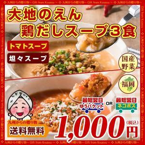 送料無料 大地のえん 選べる鶏だしスープ3食セット 時短 1000円 国産野菜 ぽっきり グルメ お取り寄せ 食品 訳あり わけあり 訳アリ 限定品 得トクセール palm-gift
