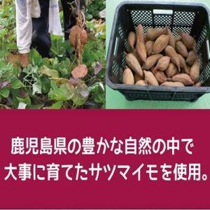 ポイント消化 お菓子 セール 鹿児島県産100...の詳細画像1