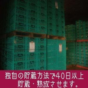 ポイント消化 お菓子 セール 鹿児島県産100...の詳細画像2