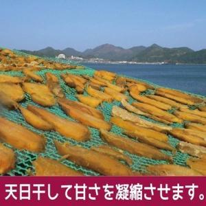 ポイント消化 お菓子 セール 鹿児島県産100...の詳細画像4