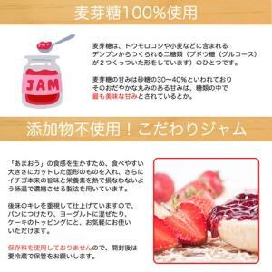 【福岡県産「あまおう」100%】あまおうイチゴ生ジャム110g【こだわりの無添加】×3個|palm-gift|04