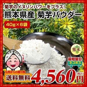 菊芋パウダー 糖尿予防 熊本県産菊芋使用 ふるさと菊芋パウダー40gX6袋 いまテレビで話題 イヌリンパワー お取り寄せ 送料無料|palm-gift