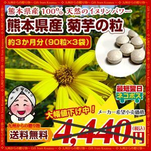 菊芋 糖尿予防 熊本県産菊芋使用 菊芋の粒(90粒×3袋)約3ヶ月分 いまテレビで話題 イヌリンパワー お取り寄せ  送料無料|palm-gift
