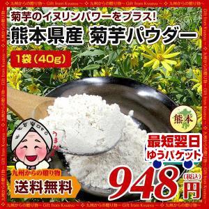 菊芋 パウダー 熊本県産菊芋使用 ふるさと 菊芋 きくいも パウダー 40g 送料無料 イヌリンパワー キクイモ ぱうだー 得トクセール|palm-gift