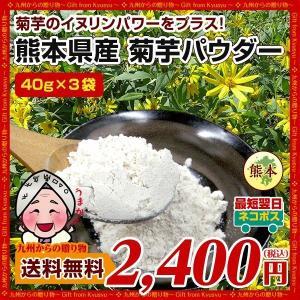 菊芋 パウダー 熊本県産菊芋使用 ふるさと 菊芋 きくいも パウダー 40g x3袋 送料無料 イヌリンパワー キクイモ ぱうだー 得トクセール|palm-gift