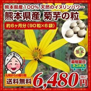 菊芋 糖尿予防 熊本県産菊芋使用 菊芋の粒(90粒×6袋)約6ヶ月分 いまテレビで話題 イヌリンパワー お取り寄せ  送料無料|palm-gift