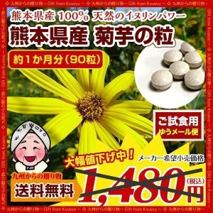 菊芋 糖尿予防 熊本県産 菊芋 使用 菊芋の粒(1袋90粒)約1ヶ月分 きくいも お食事前に イヌリンパワー きくいも キクイモ 送料無料  得トクセール|palm-gift