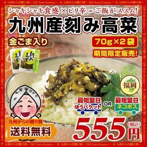 ラー油仕立て!極み辛子高菜×2袋