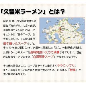 ポイント消化 5種から選べる 九州ご当地 ラーメン お好み2人前食べ比べ 食品 送料無料 お試し 得トクセール 食品 ラーメン わけあり オープン記念 b1|palm-gift|11