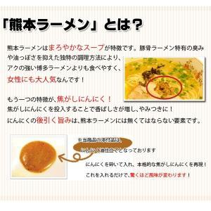 4種から選べる 九州とんこつラーメンお好み5人前食べ比べ セット ぽっきり 送料無料 ポイント消化 食品 得トクセール お取り寄せ 1000円 食品 b1|palm-gift|14