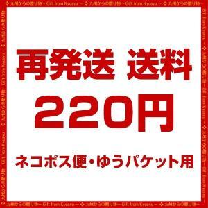 送料 220円 再送料|palm-gift