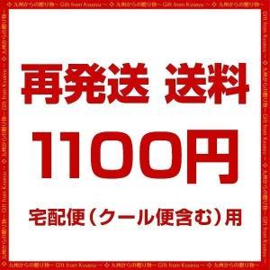 送料 1100円|palm-gift