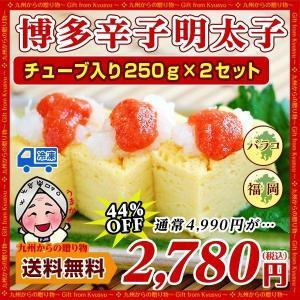 有色 辛子明太子バラコ (チューブ250g)×2本セット 食品 お取り寄せ 博多 明太子 お取り寄せ 送料無料 バラ子 辛い 激辛 ギフト b1|palm-gift