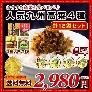 送料無料 大人気4種 九州高菜 バラエティセットX各3袋 ご飯に チャーハンに ラーメンに グルメ 食品 お取り寄せ 高菜漬け セール 漬物 b1 漬物 つけもの|palm-gift