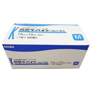 販売名:滅菌ケーパイン 分類:一般医療機器 医療機器届出番号:27B1X00006536010 製造...