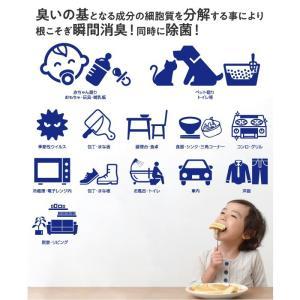 【500ml】除菌 消臭 防カビ スプレー 赤ちゃん ペット 花粉 アトピー インフルエンザ ノロウイルス PM2.5 食中毒 トイレ 空間除菌 panacea 07