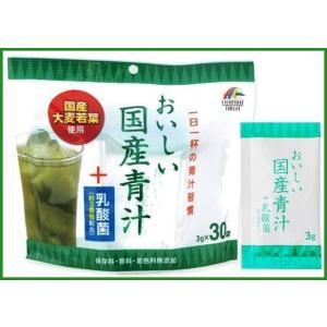 ユニマットリケン おいしい国産青汁+乳酸菌 90g(3g×30袋)|b03|pandafamily