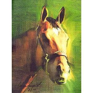 海外セレクション 版画Barbaro Race Horse Close Up キャンバス 8 5 x11