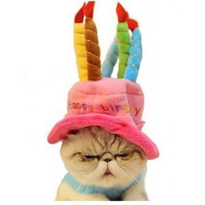 ペット帽子 小型犬 猫 お誕生日 プレゼント バースデー 記念日 ろうそく ケーキ型 ハット  小動物 ペット 写真 クリスマス panni 送料無料|panni-fashion