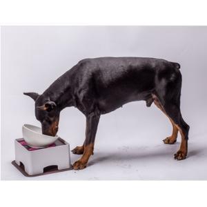 ペット用給食器+給食台セット 中/大型犬用フードボウル+テーブルセット お洒落 お食事がラク!滑り止めシリコーンマット付き!手入れ簡単! panni123