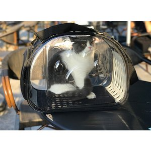 Panni ペットキャリー 猫キャリー お出かけ用ペットバッグ 収納便利 開放感 2色選べる|panni123