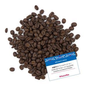 【数量限定】スペシャルティコーヒー コスタリカ・ラ・カソーナ・エルロデオ 200g|paocoffee