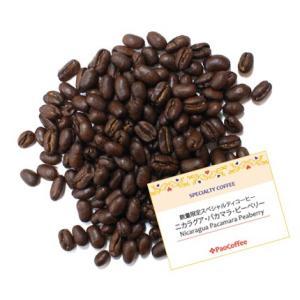 【数量限定コーヒー豆】スペシャルティコーヒー ニカラグア・リモンシリョ・パカマラ・ピーベリー200g|paocoffee