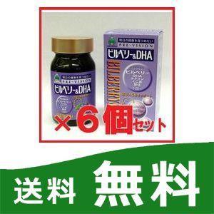 ビルベリー&DHA 6個セット 湧永製薬 プレビジョン|papamama
