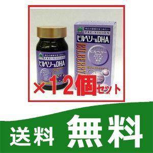 ビルベリー&DHA 12個セット 湧永製薬 プレビジョン|papamama