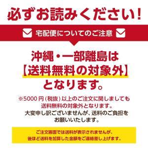腸美源(60包)【送料無料(一部地域を除く)】|papamama|02