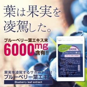 ブルーベリー葉エキス末EX粒 メール便 サプリメント 1000円ポッキリ|papamama