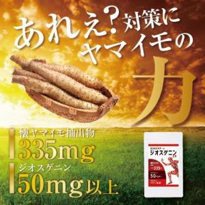 DHEA ジオスゲニンのサプリメント  『ロコモクリアーR ジオスゲニンEX 60粒』 山芋 ヤマイ...