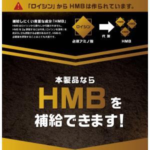 HMB & BCAA アルギニン HMB 『H...の詳細画像3