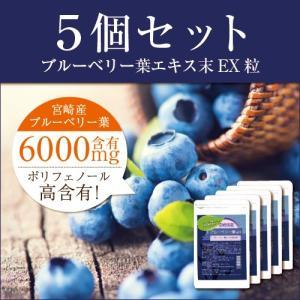 【5袋セット】ブルーベリー葉エキス末EX粒 メール便 サプリメント tk10|papamama