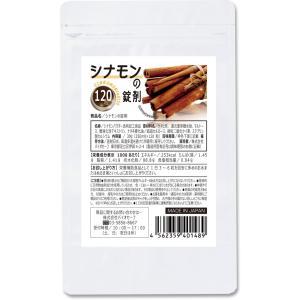 シナモンのサプリメント 120粒 メール便  シナモン 1000円ポッキリ|papamama
