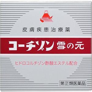コーチゾン雪の元 6g メール便 【指定第2類医薬品】  メール便 tk10