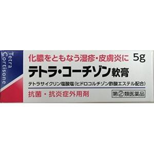 テトラ・コーチゾン軟膏 5g 定形外郵便 【指定第2類医薬品】 tk10