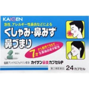カイゲン鼻炎カプセルP 24カプセル メール便 【指定第2類医薬品】  メール便