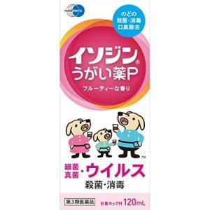 イソジンうがい薬P 120mL 定形外郵便 【第3類医薬品】...